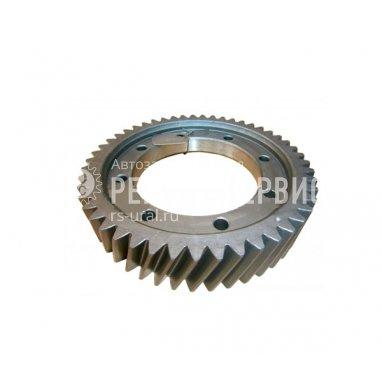 4320Х-2402120-Шестерня ведомая цилиндрическая (49 зубьев) фото